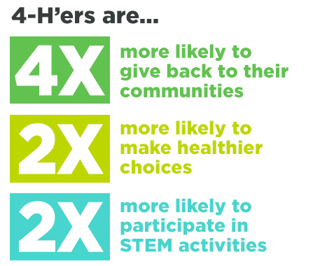 Graphic with statistics of 4-H member participation